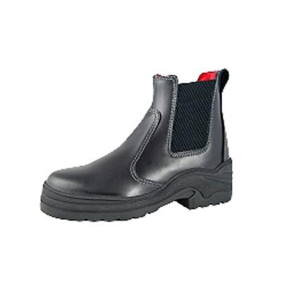 Equitector Field Master II short boots